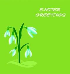 Easter snowdrops vector