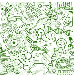 Biology drawings vector