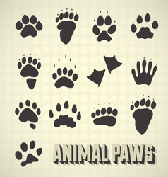 Animal paw prints vector
