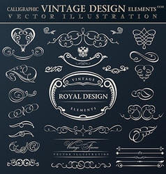 Calligraphic elements vintage ornament set frames vector