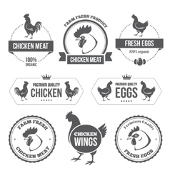 Chicken meat and eggs 1 vector