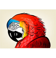 Parrot background vector