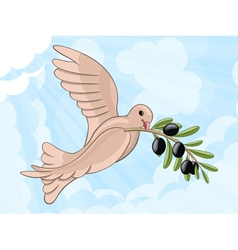 Pigeon with olive branch vector