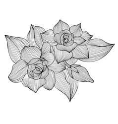 Decorative gardenia vector