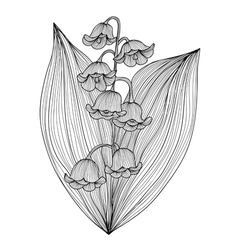 Decorative lily of the valley vector