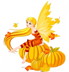Autumn fairy on the pumpkin vector