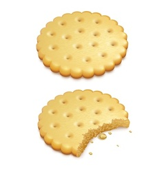 Crispy cookies isolated on vector