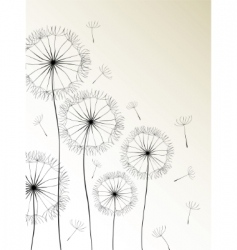Dandelions card vector