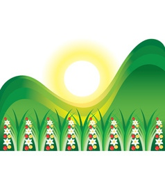 Flowering grass and sun vector