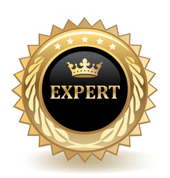 Expert badge vector