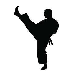 Karate trainer silhouette vector