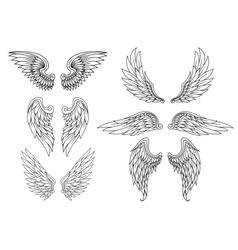 Heraldic wings set vector