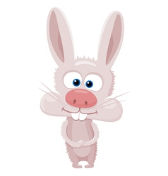 Cartoon rabbit vector