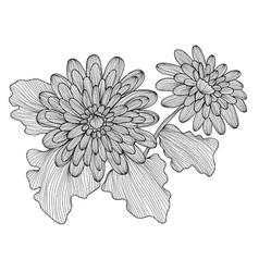 Decorative gerbera vector