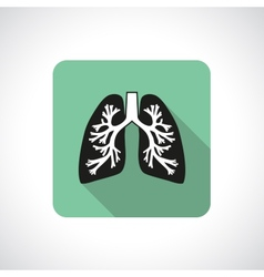 Lungs square icon vector