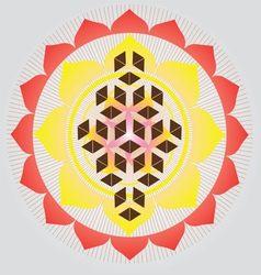 Flower of life seed vector