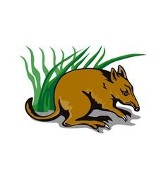 Bandicoot bush retro vector