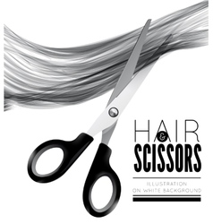 Hair and scissors on a white background vector