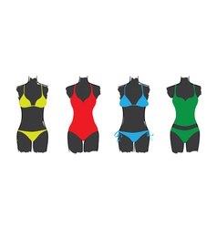 Swimsuit set vector