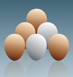 The eggs vector