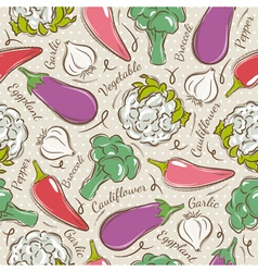 Background with pepper eggplant cauliflower vector