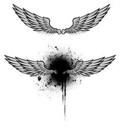 Wings grunge set vector