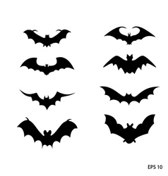 Bat black silhouette on white backgro vector