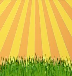 Sun rays green vector