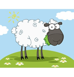 Black sheep cartoon character vector