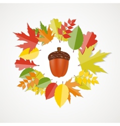 Acorn with leaves autumn vector