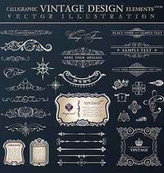 Set vintage calligraphic design elements and page vector
