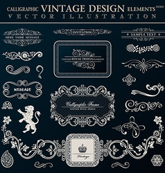 Calligraphic heraldic decor elements vintage vector