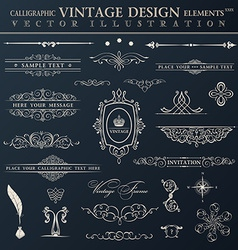 Vintage set calligraphic elements and page vector