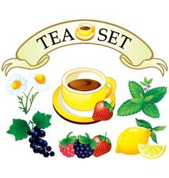 Tea set aromatic plants vector