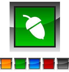Acorn icons vector