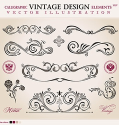 Set classic calligraphic design elements ornament vector