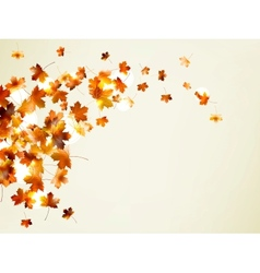 Flying autumn leaves background eps 10 vector