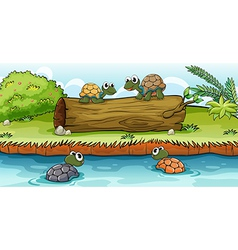 Turtles on water and log vector