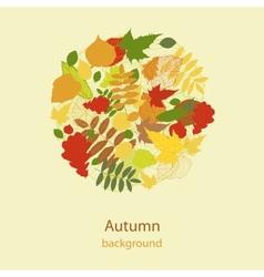 Autumnal bright leaf background vector