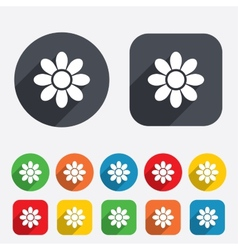 Flower sign icon blossom symbol vector