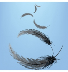 Feathers in the wind vector