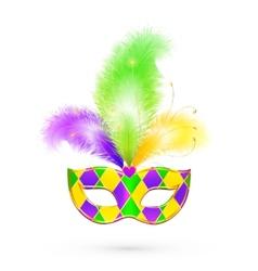Mardi gras traditional colors mask vector