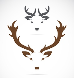 Image of an deer head vector