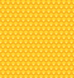Honey background vector