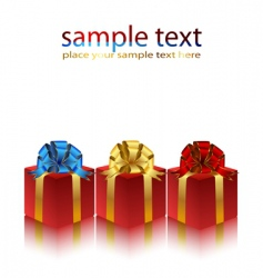 Gifts packaged vector