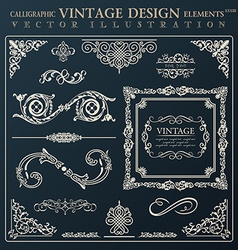 Calligraphic design elements vintage ornament vector