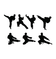 Karate set vector