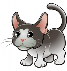 Domestic cat vector