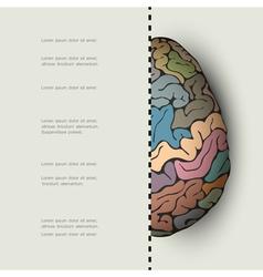 Concept of human brain vector