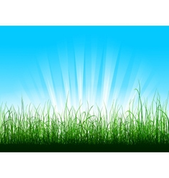 Green grass over blue sky with sunbeams vector